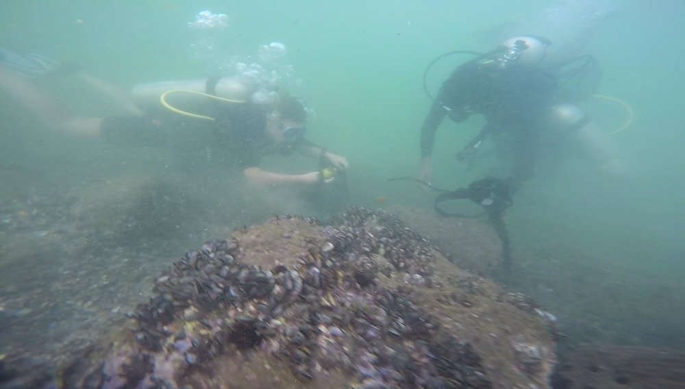 Sarah & Lily (our ecotourism team) cleaning up Kovalam underwater.