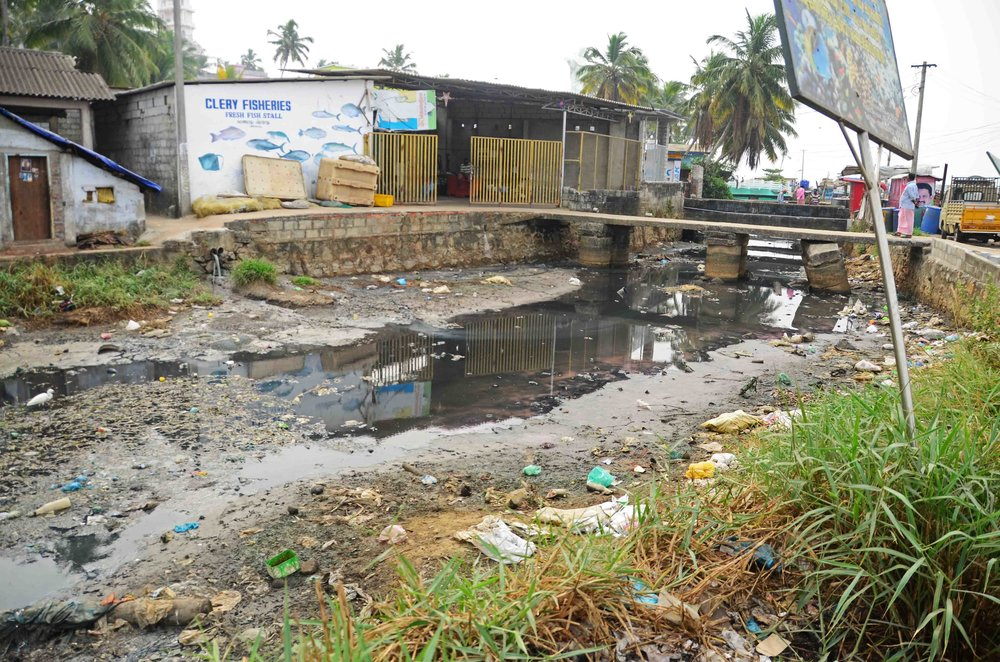 The raw sewage and waste that feeds into Vizhinjam Harbour is having devastating impacts on marine and human health in the region.