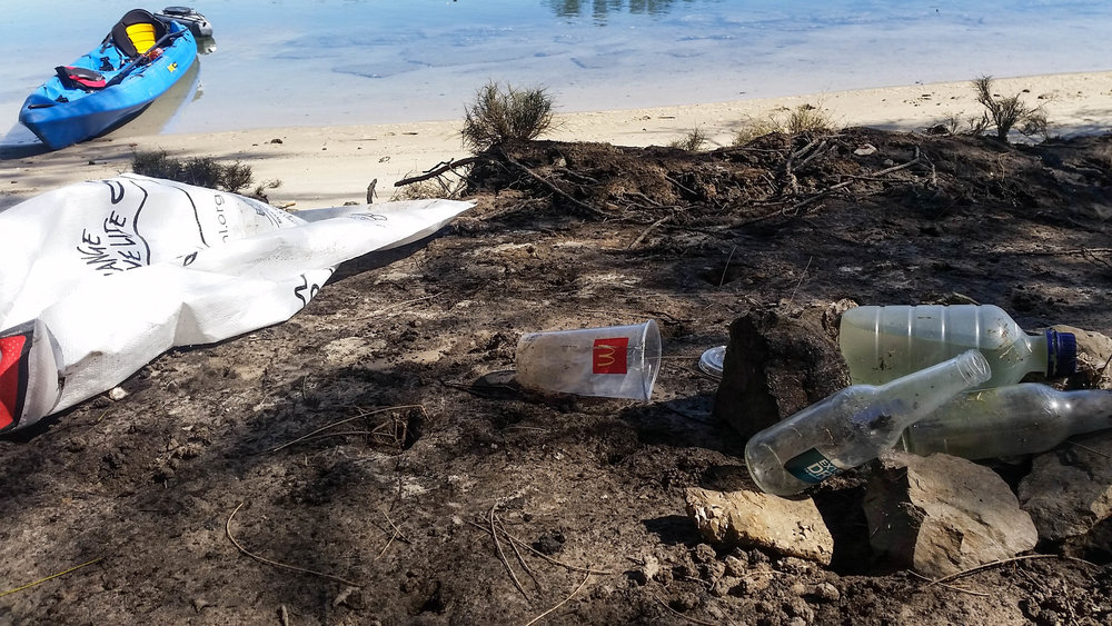 Plastic cups, bottles and other trash. A common site along the banks of the Tallebudgera Creek and one that our team hopes to address.