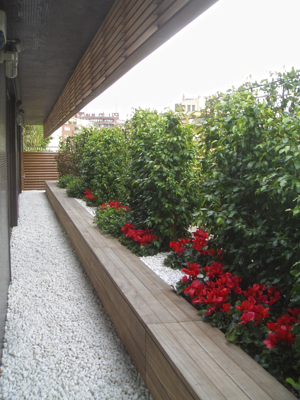 Aeland - Paisajismo - Landscape - Barcelona - Garden - Jardin