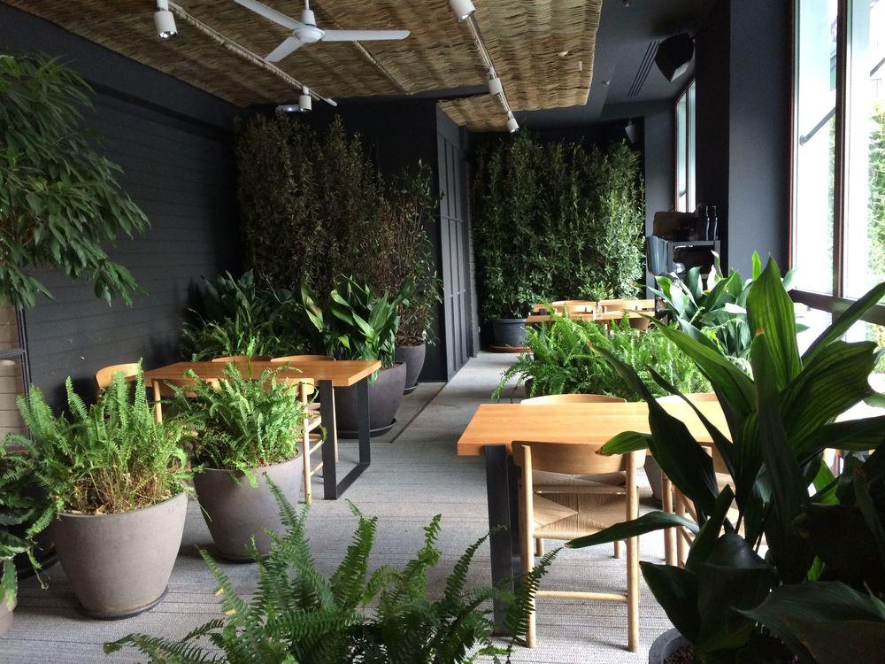 AELAND - restaurante-interior-jardin.jpg