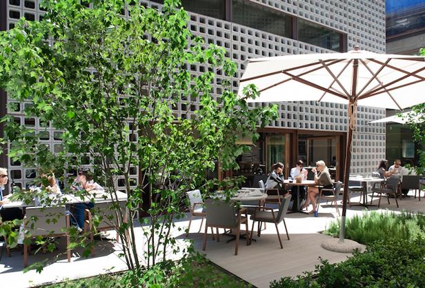 AELAND - restaurant_madrid_garden.jpg