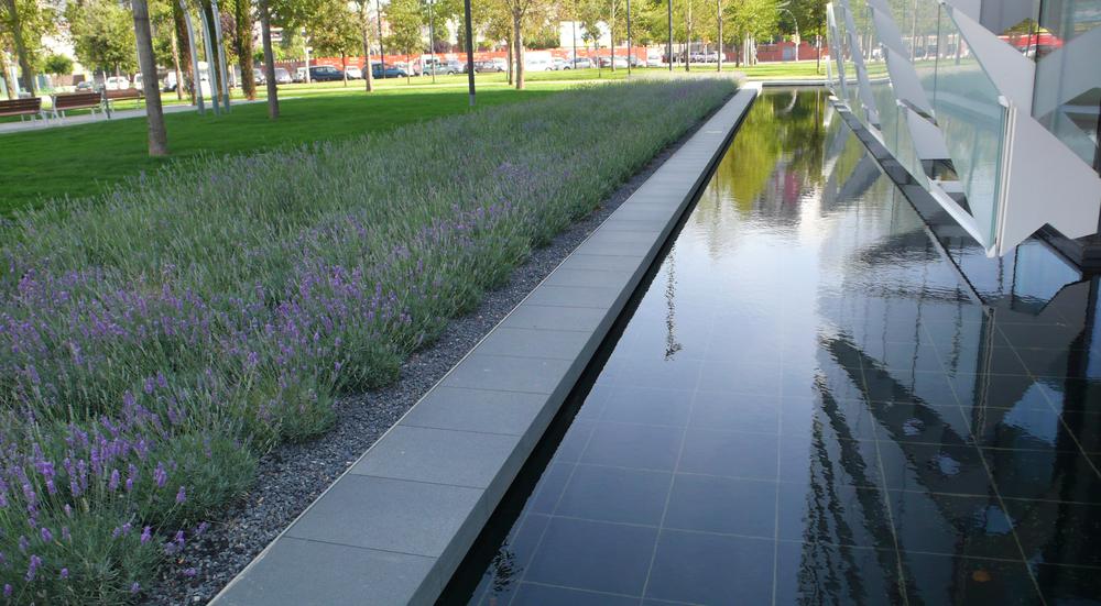 AELAND - paisajismo-levanda-agua-urban.JPG