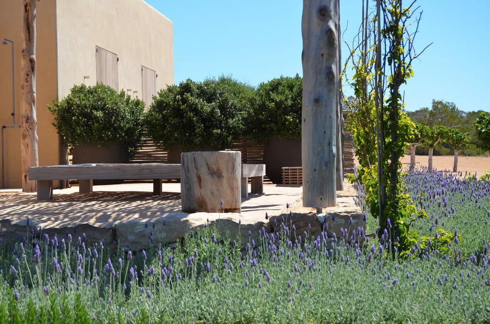 aeland_formentera_jardines.JPG