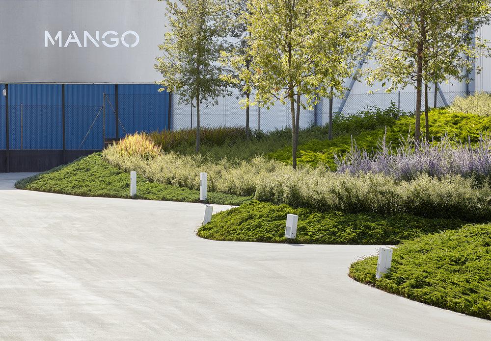 MANGOLINE 07.jpg