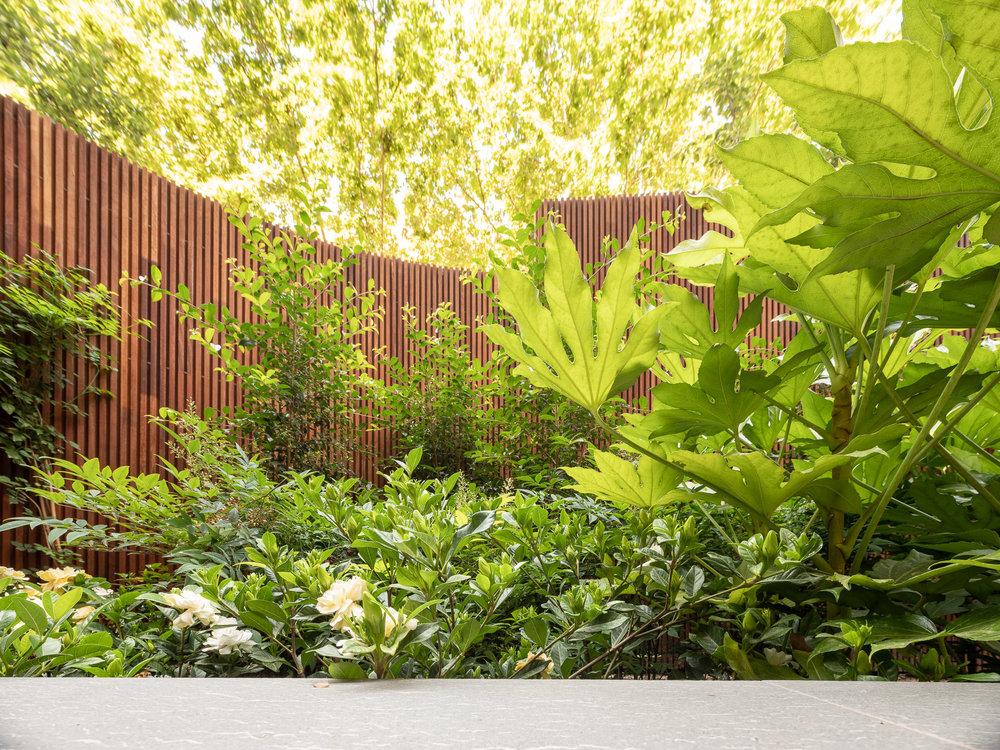 aeland-garden-barcelona5.jpg