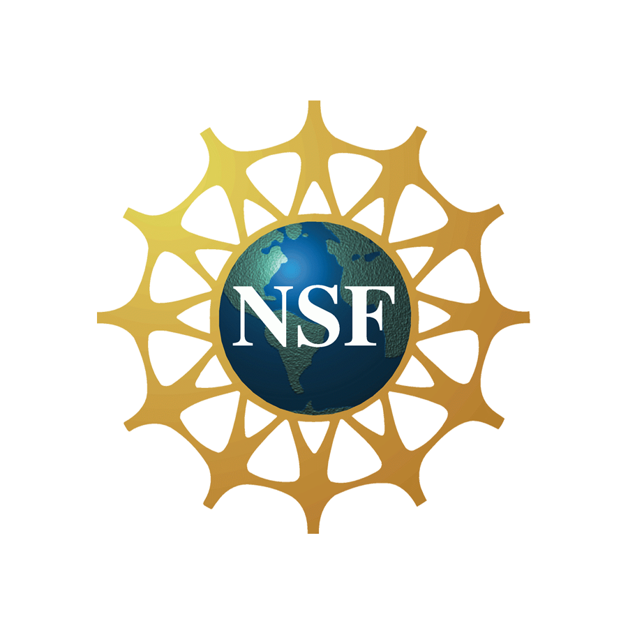 <p><strong>National Science Foundation - SBIR</p>