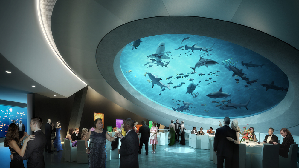 View from below the Gulf Stream Tank.    Rendering: Grimshaw Architects