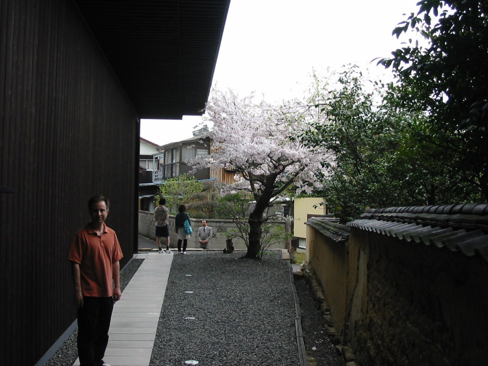 Benesse MH Turrell Cherry blossoms.jpg