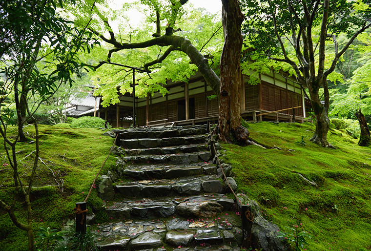 Moss temple stone step and pavilion.jpg