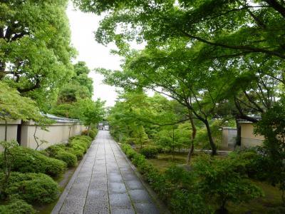 Pathway Daitoku-ji _izusen03.jpg