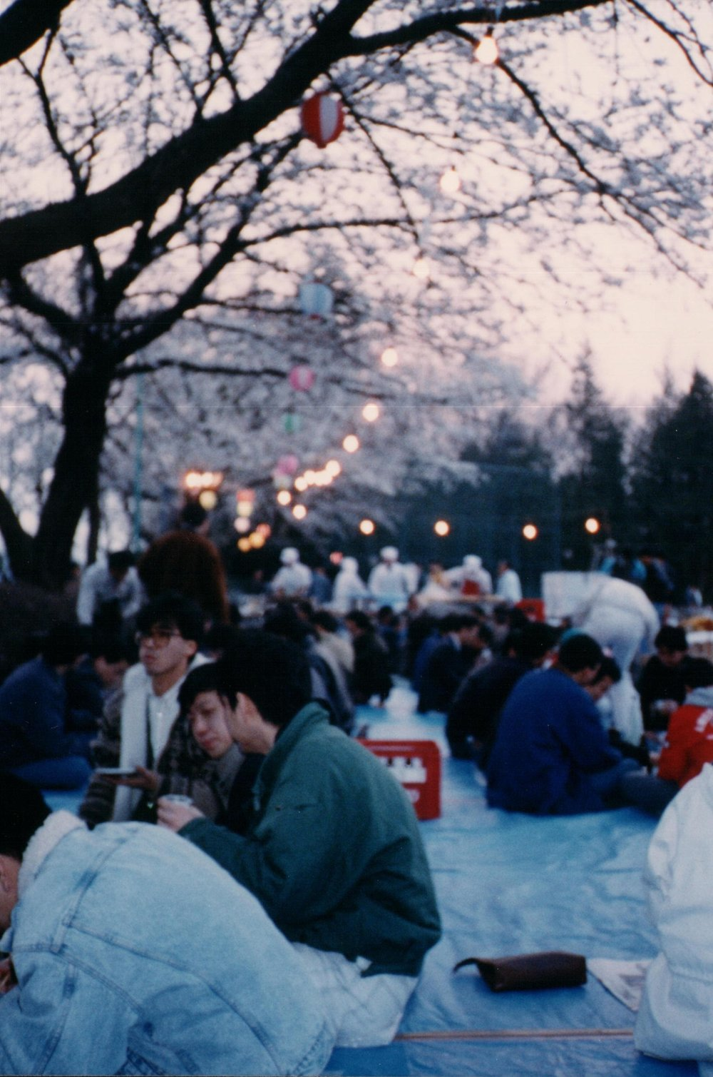 Cherry blossoms MH Party.jpg