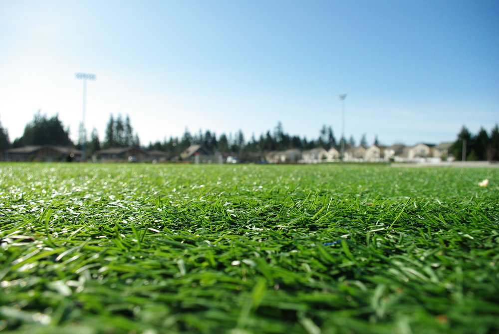 FieldTurf_at_53rd_Avenue_Park_-_Hillsboro_Oregon.jpg