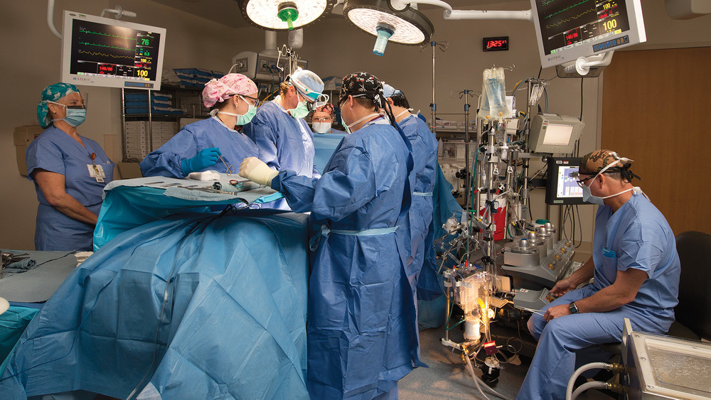 Orange Park Medical Center: Cardio Thoracic Surgery Team