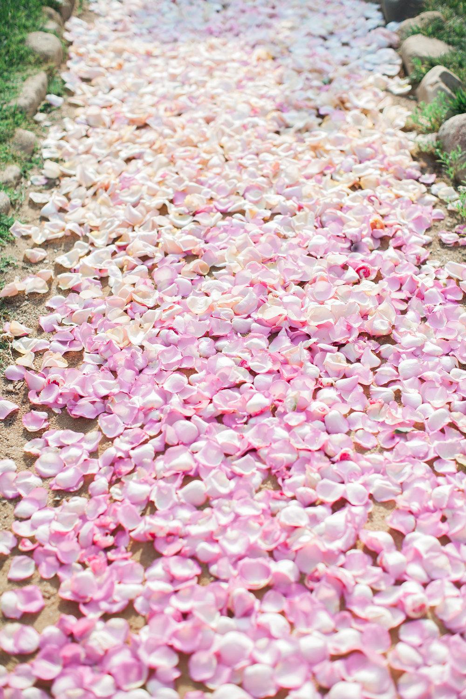 pink ombre rose petal aisle