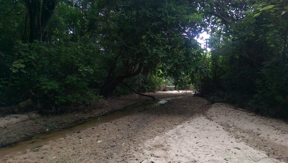 National Park Tayrona - Magdalena