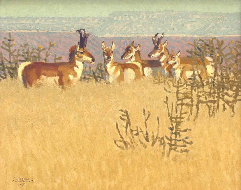 Antelope Pasture
