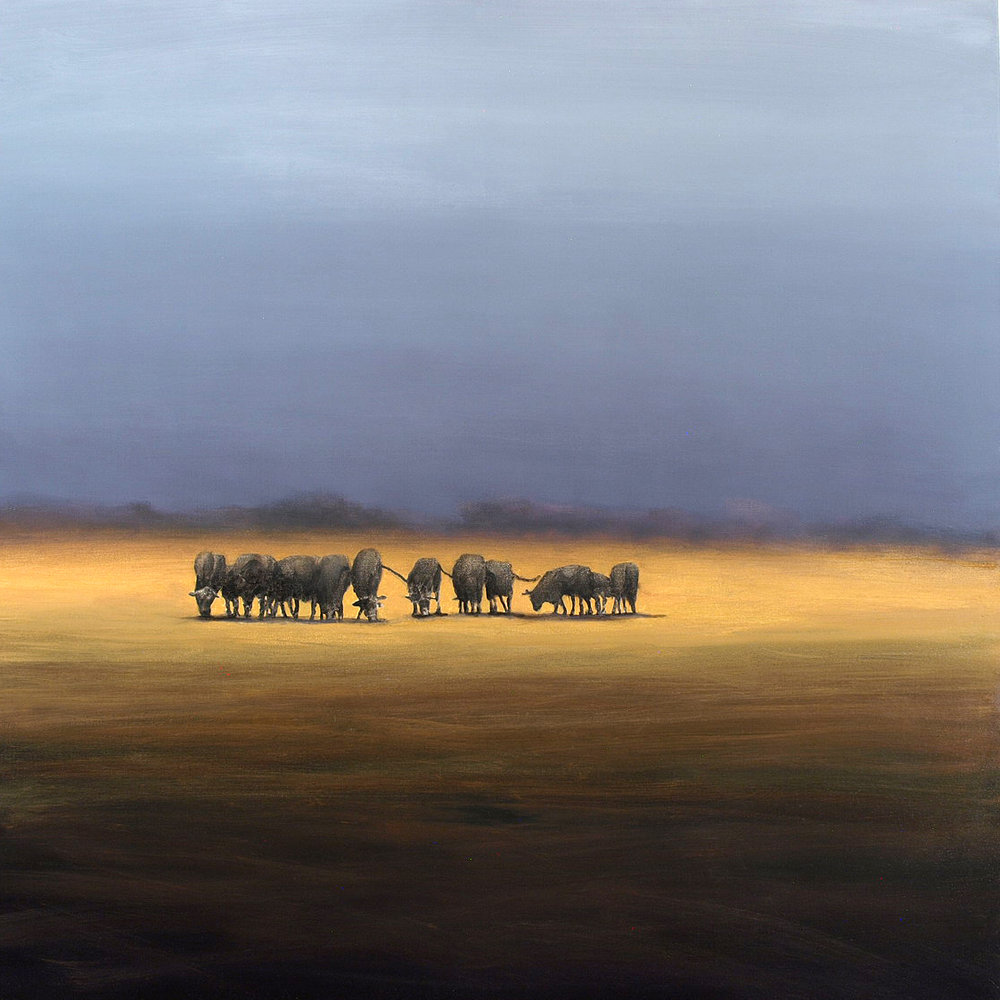 "After the Storm  Oil on linen 40"" x 40"""