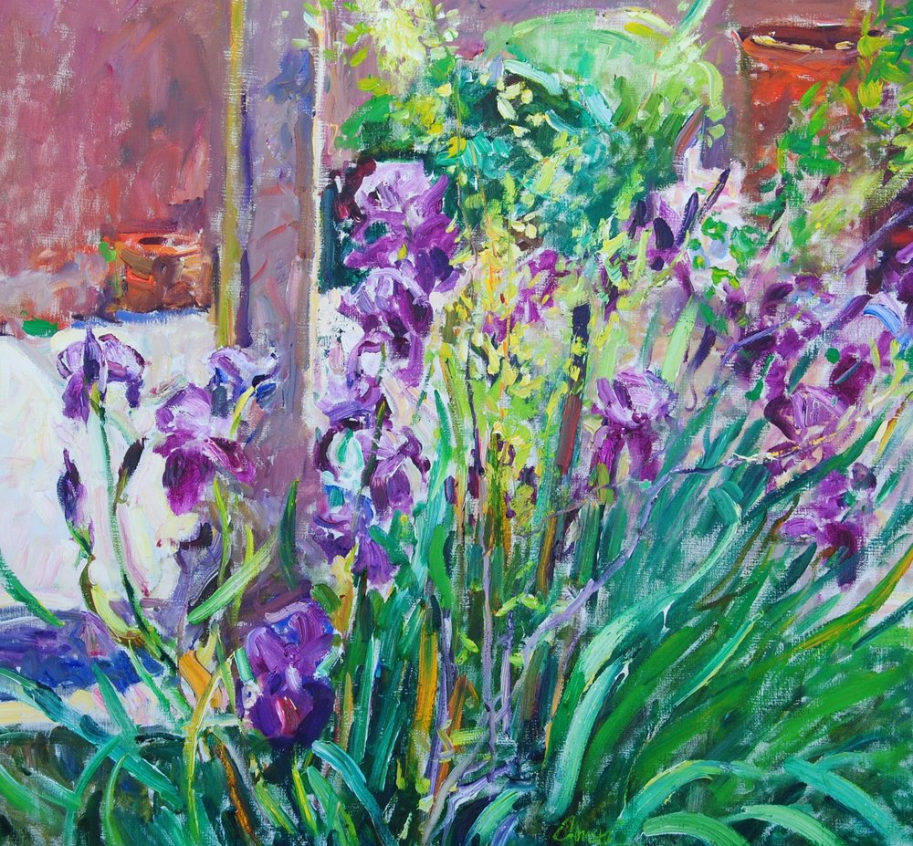 Taos Iris Garden
