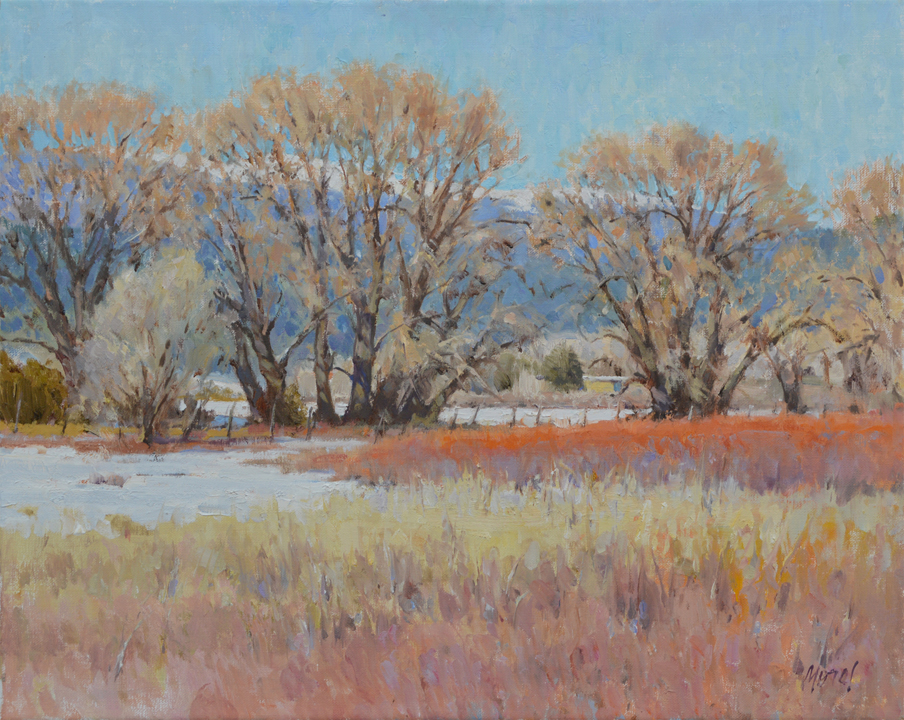 "CHris Morel, Willow meadow, mora, NM, oil, 16"" x 20"""