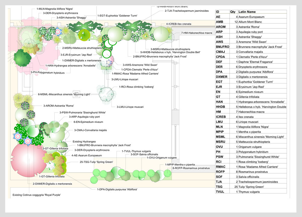 Planting Plans - Consistency with the visualisations I create detailed planting plans by using Vectorworks as main software. That allows to create planting lists accordingly.