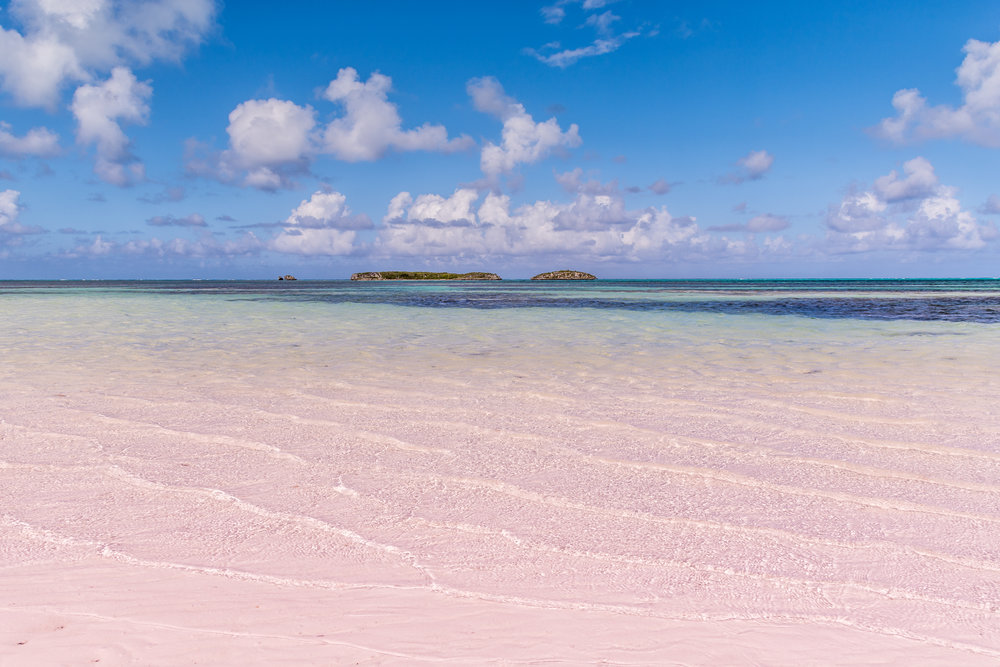 (BAHAMAS) c_Bahamas Ministry of Tourism_Pink Sands Beach.JPG