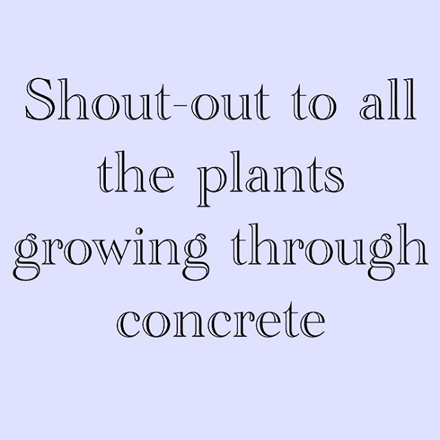 Always keep growing 🌷🌻🌹 #growth #edrecovery #yougotthis