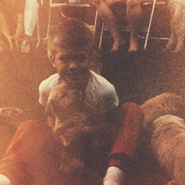 "1988 - Dustin picking out his first puppy, Misty  Our friends at @vet_ranch do amazing things for man's best friend ... and they happen to use our song, ""Rosa Dear,"" on their YouTube channel. If you haven't already, download the song - all month long we're donating the proceeds to Vet Ranch. #vetranch #ruththeband"