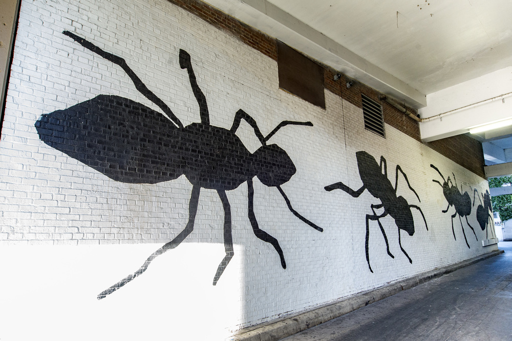 Ann Arbor State Street District Mural