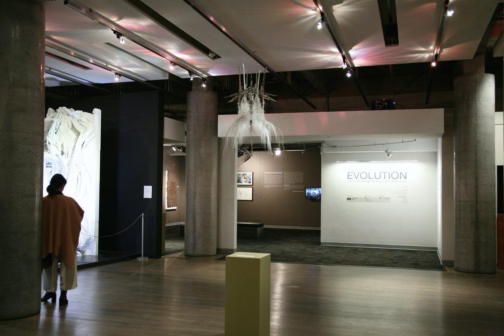 EVOLUTION: can Human Intelligence design better than Nature?