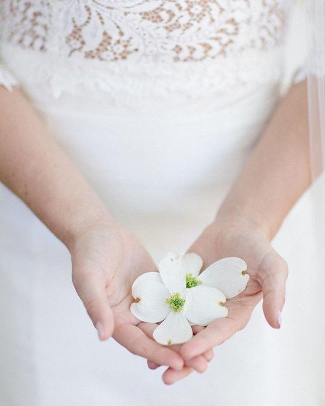 Beautifully simple. #kimboxphotography #wedding #weddingphotography #alabamawedding