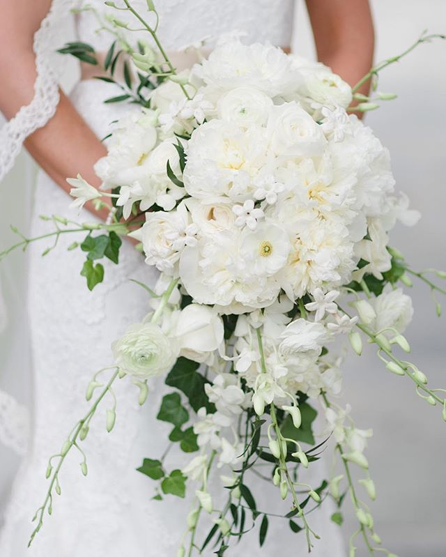 Classic gorgeous bridal bouquet #kimboxphotography #wedding #bridalbouquet #florals #weddingphotography