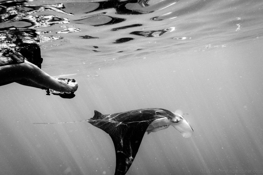 Ian, budding underwater photog