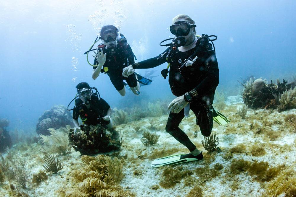 Discover scuba divers Weiwei and Naoko!