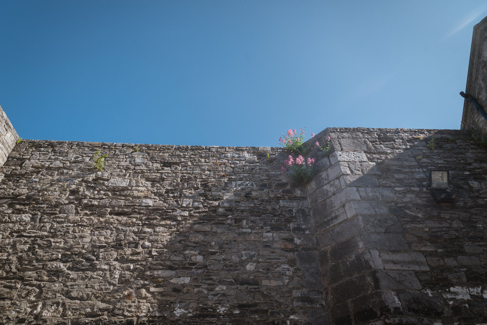 The high walls of the courtyard