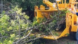 WPOA will shred property owners' downed limbs and yard waste for an hourly fee.  Details .