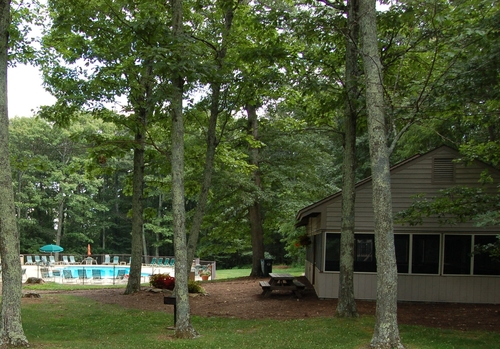 Chestnut Springs   Swimming pool and pavilion on the mountain  Details, calendar & map- click HERE