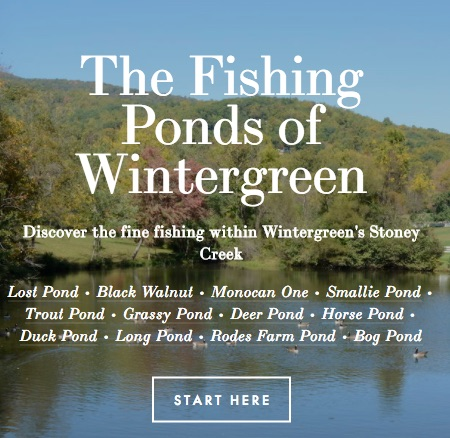 Visit the Wintergreen Sporting Club's online guide to  The Fishing Ponds of Wintergreen .