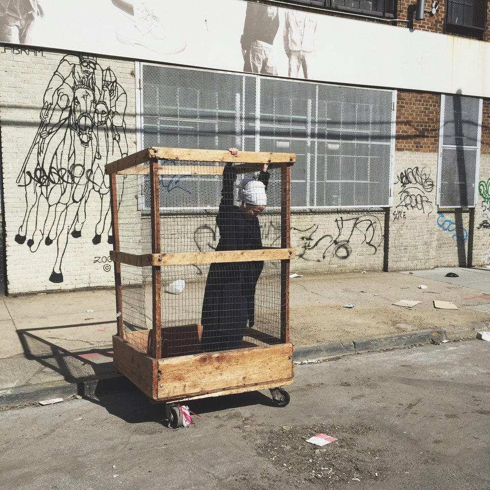 Humans-Dont-Like-Cages-7