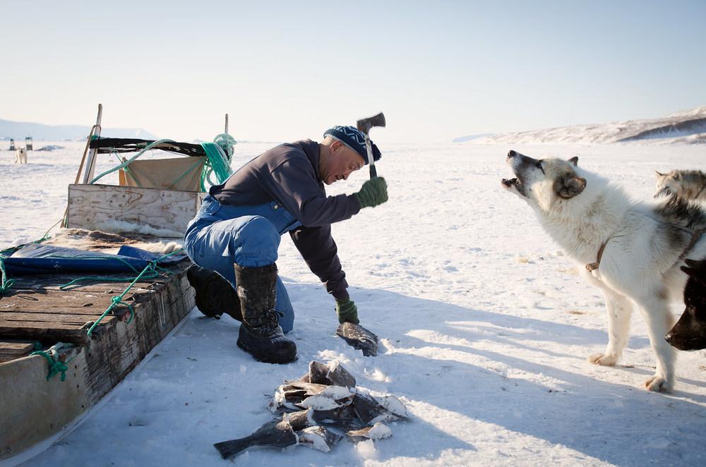 ©Justin Lewis_Greenland.2012-16.jpg