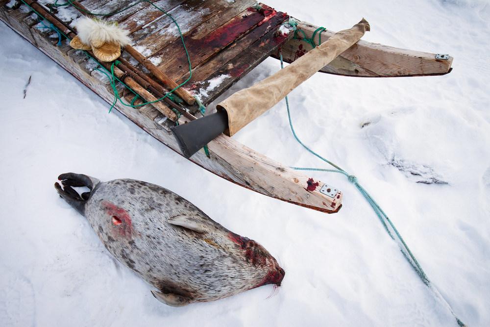 ©Justin Lewis_Greenland.2012-33.jpg