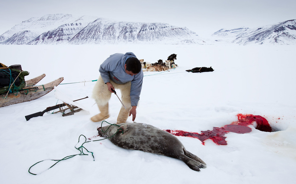 ©Justin Lewis_Greenland.2012-35.jpg