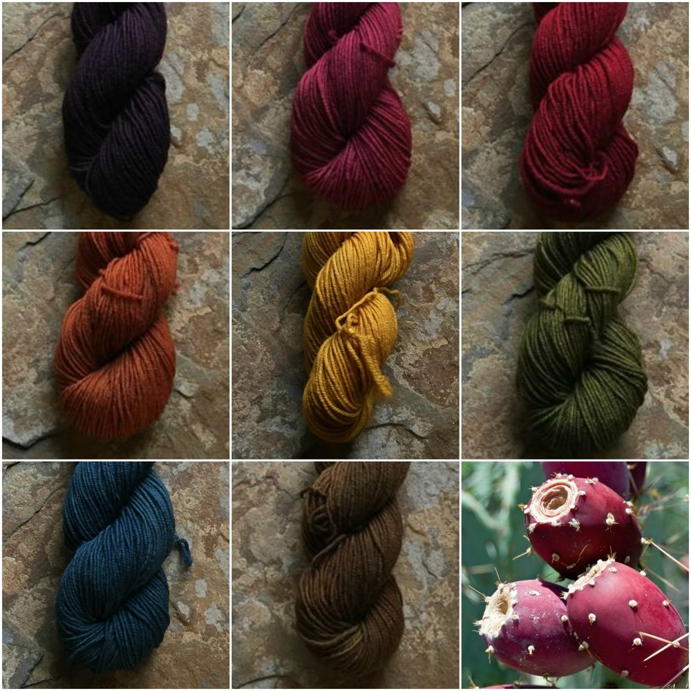 The Botany Collection Semisolids, Elderberry Purple, Cactus Fruit, Pulpit Berry Red, Poppy Orange, Mustard Yellow, Pulpit Green, Succulent Green, and Pulpit Brown.