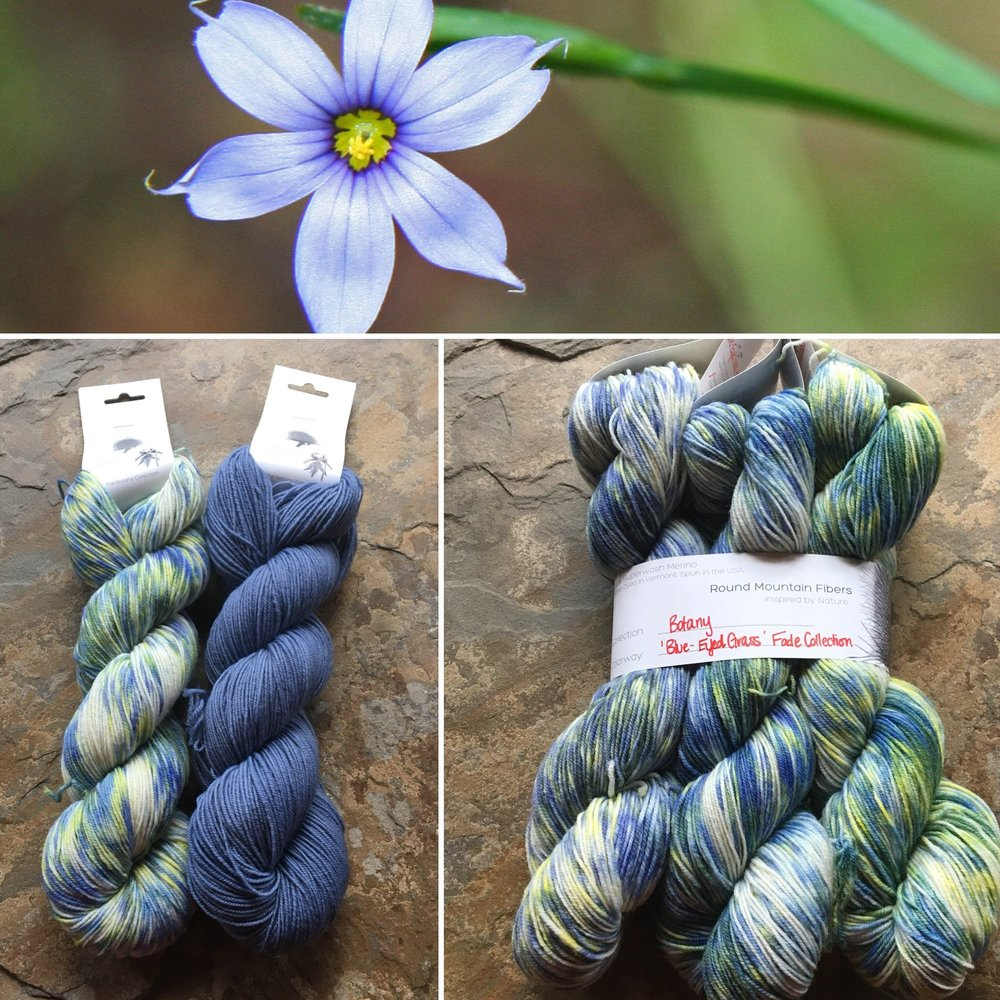 blue eyed grass collage.jpg