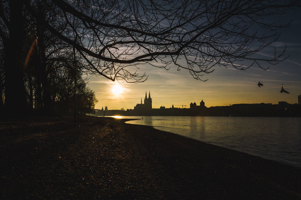 kölner-dom-from-distance-trilastiko-travel.jpg