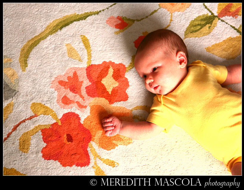 New Jersey Newborn Portrait Photography