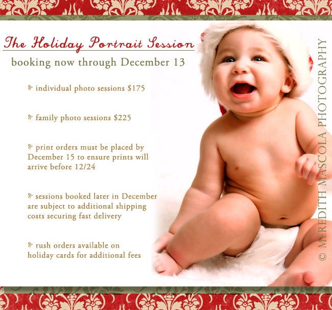 Meredith Mascola Photography Holiday Portrait Deadlines