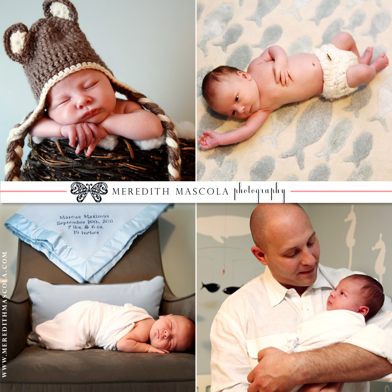 new jersey newborn portraits