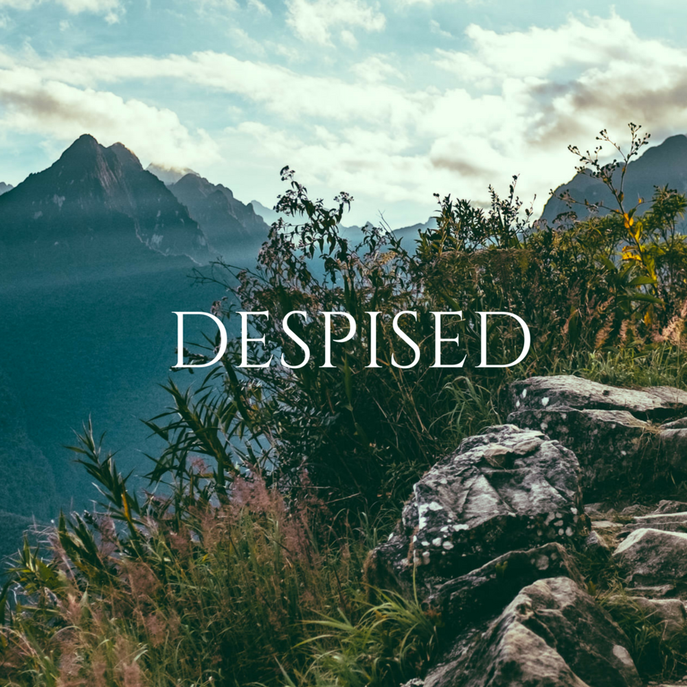 16 Despised.png
