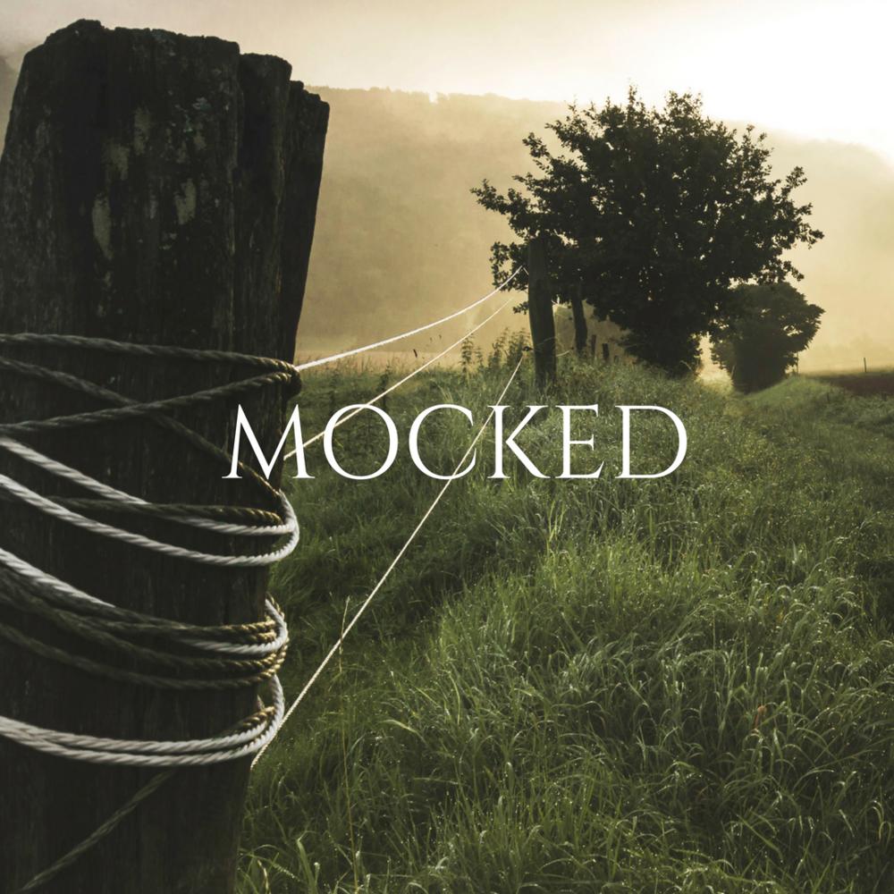 MOCKED 17.png
